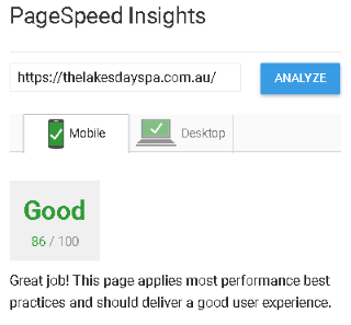 Google PageSpeed Insights Green result